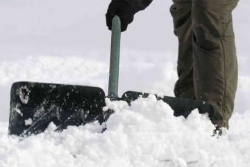 Servizi Neve